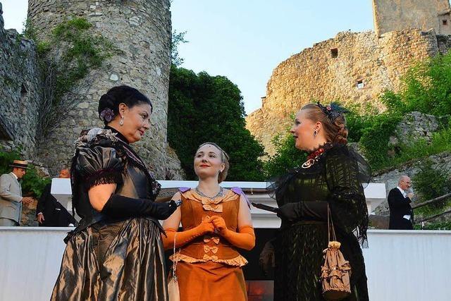 Burgfestspiele Rötteln werden wegen Erkrankung abgesagt