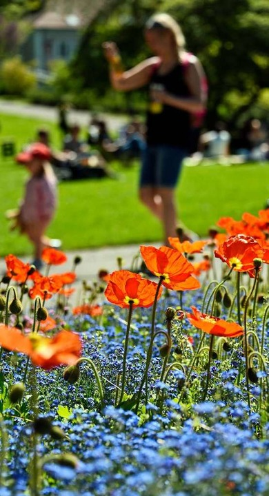Frühlingsstimmung im Stadtgarten    Foto: Michael Bamberger