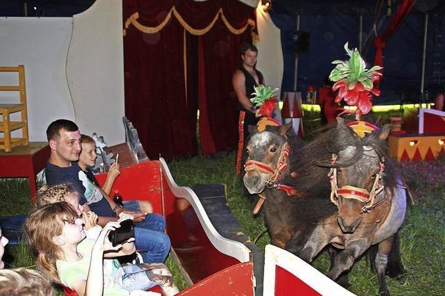 Zirkuszelt in Wallbach