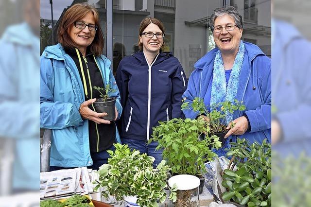 Pflanzenbörse kommt an