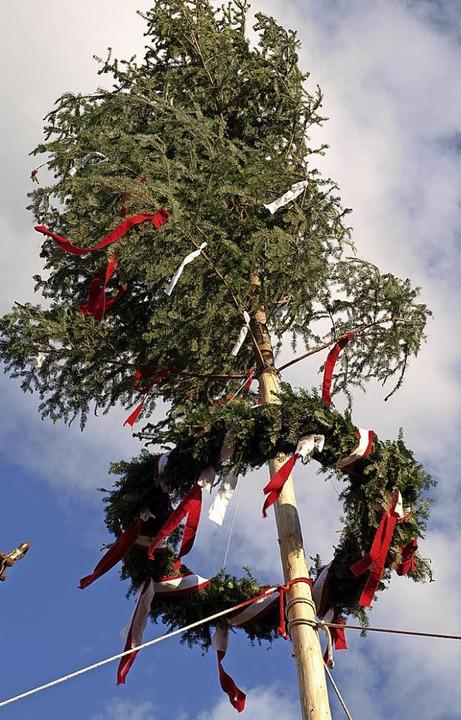 Der Brombacher Maibaum mit dem Festkranz   | Foto: Schleer