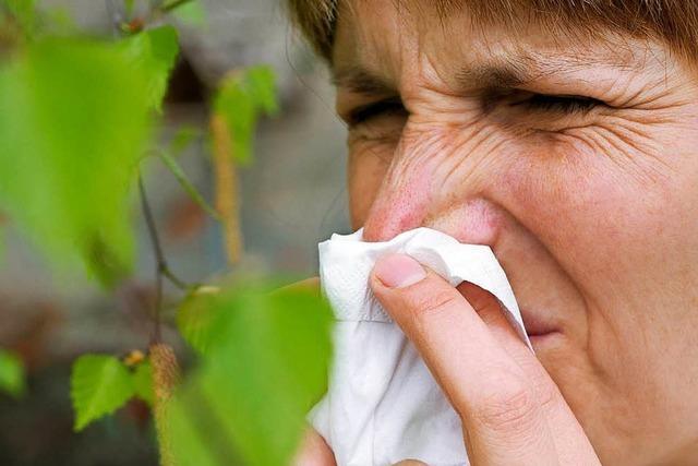 Experten der Fachklinik St. Blasien geben 6 Tipps für Allergiker