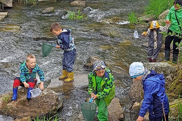 Vorschulkinder entdecken die Artenvielfalt in der Schutter