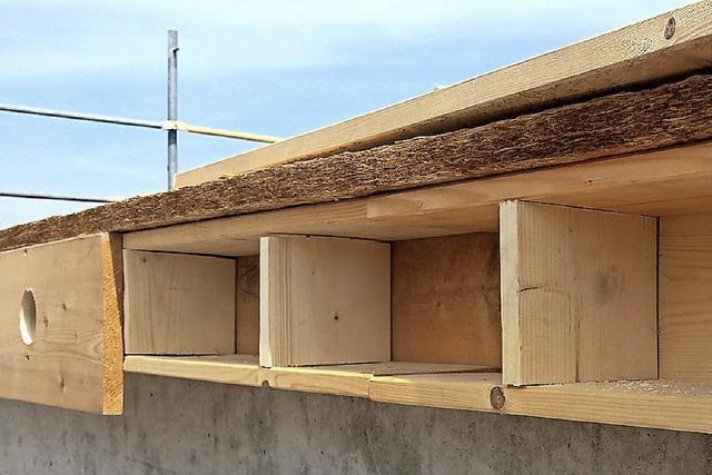 Mauersegler sollen ein Zuhause im neuen Stadtteil Gutleutmatten finden