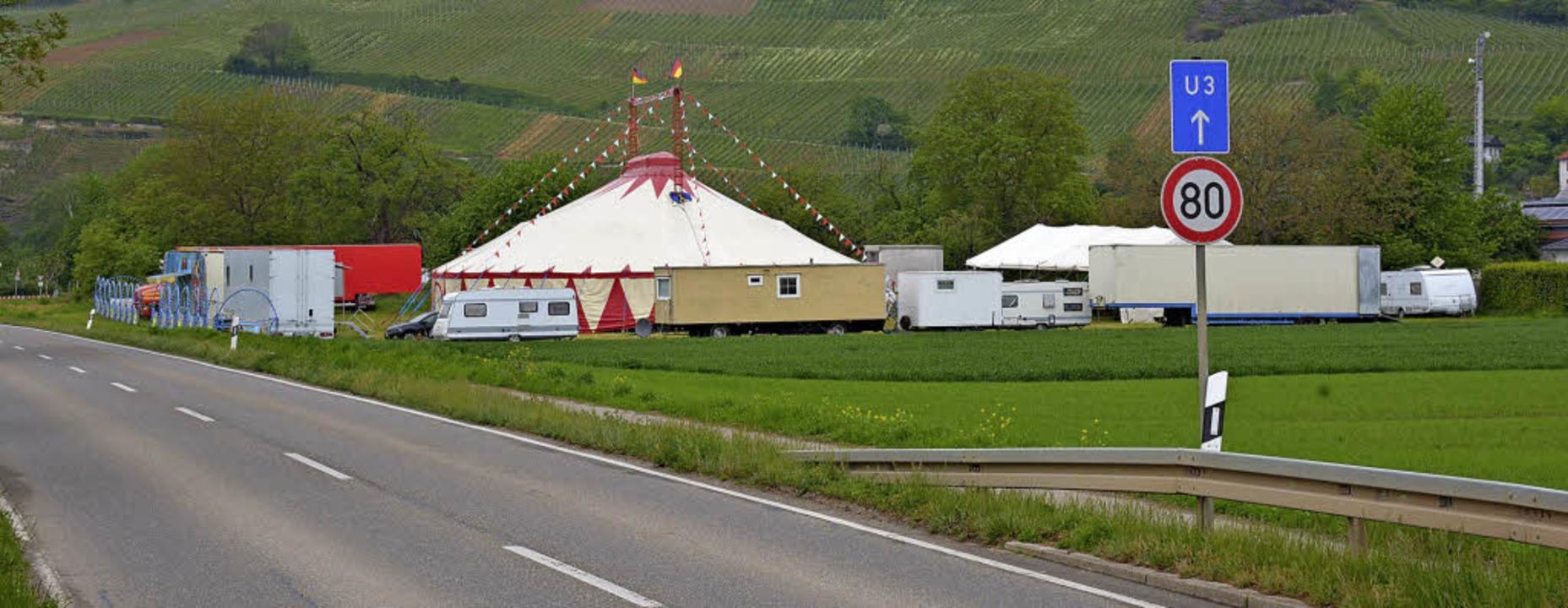 Der Circus Mustang hat seine Zelte bei Efringen-Kirchen aufgeschlagen.   | Foto: Lauber