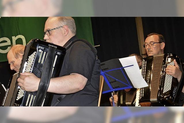 Virtuoser Klangzauber auf dem Akkordeon