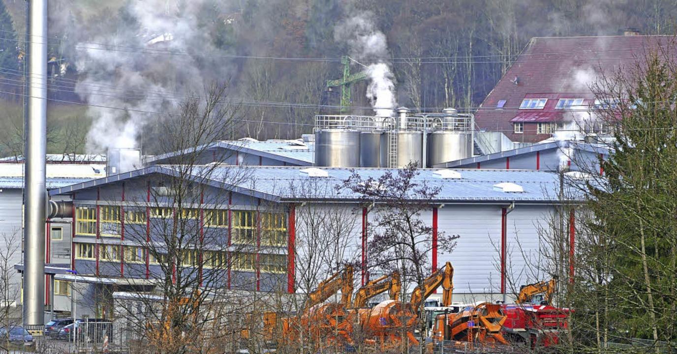 Nach dem Kauf des <BZ-Keyword>Nilit Pl...investieren, um Gerüche zu beseitigen.  | Foto: Sattelberger