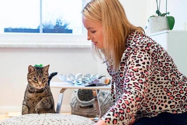 Tiertherapeutin Birga Dexel behandelt Verhaltensstörungen von Katzen