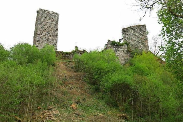 Burgruinen der Roggenbacher Schlösser drohen zu zerfallen