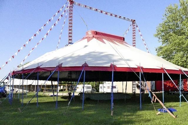 Zirkus zu Gast in Eimeldingen