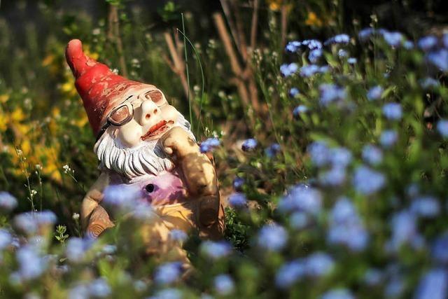 Kleingärten sind gefragt – aber es gibt immer weniger Flächen dafür