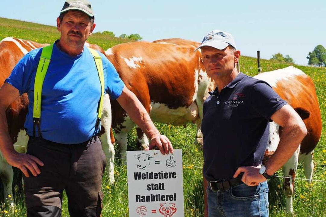 Werner Rombach (links) und Fridolin Sa...anderweg ein Protestschild angebracht.  | Foto: Rita Reiser