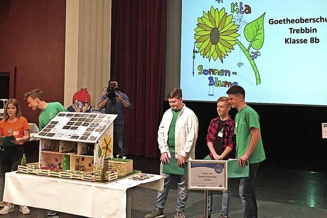 Oberschüler und Handballer aus Trebbin fahren tolle Siege ein