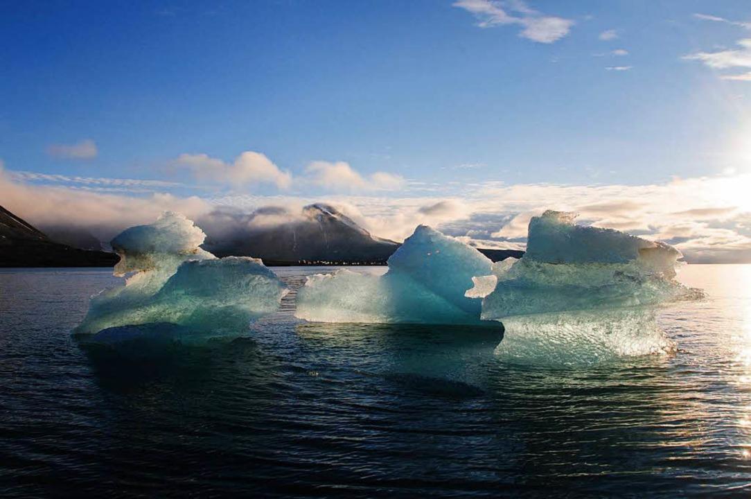 Das Eis in der Arktis schmilzt zügig.  | Foto: dpa