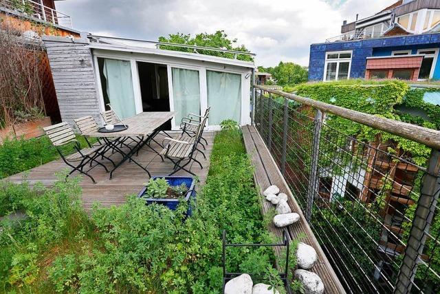 Warum uns Dachbegrünung, Alleen und wilde Grünflächen gut tun