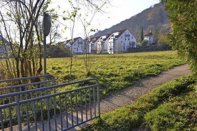 Fläche für den Wohnungsbau nimmt erstmals zu
