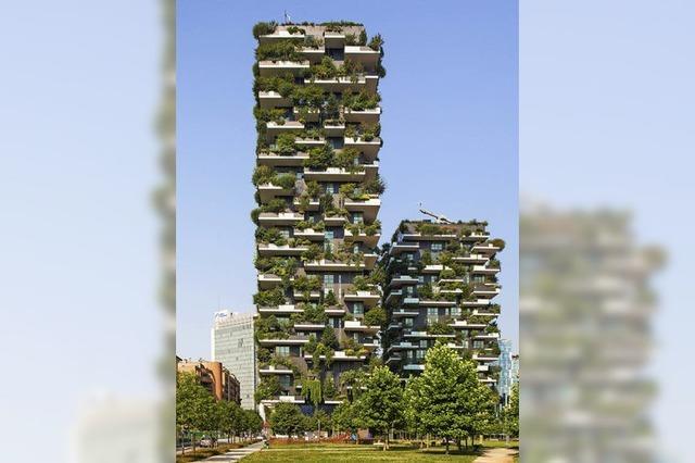 Bäume auf die Dächer - Wälder in die Stadt