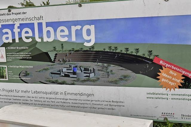 Initiative Tafelberg gibt Verwaltung an die Stadt ab