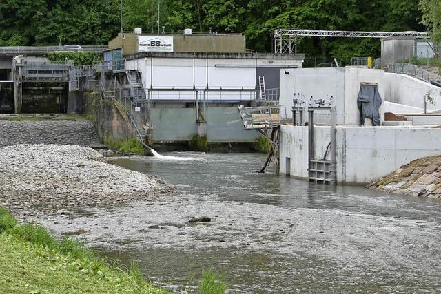 Am Stauwehr in Lörrach entsteht eine Fischtreppe