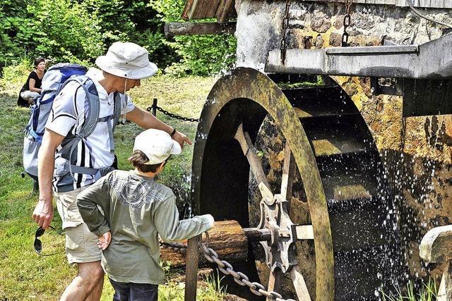 Von Mühle zu Mühle