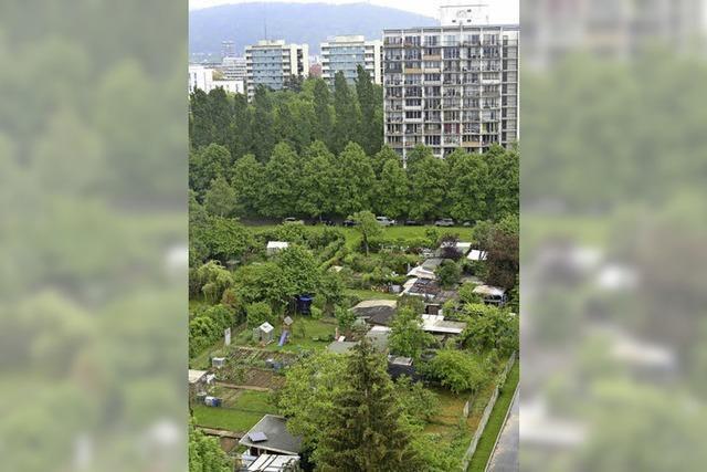 Weitere Gärten könnten entfallen