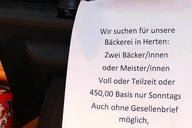 Rheinfelder Betriebe suchen dringend Personal