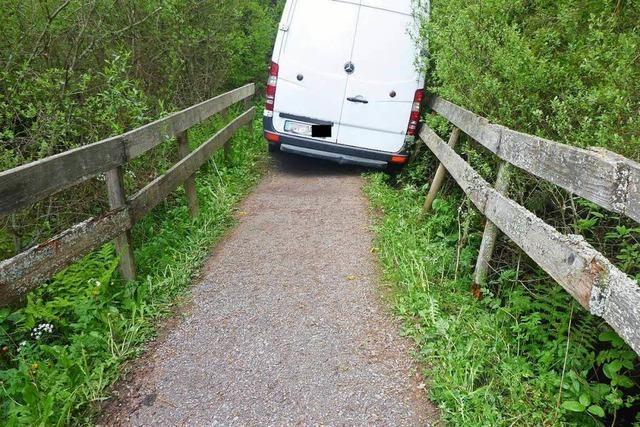 Paketdienstfahrer nimmt Abkürzung und rutscht ins Moor