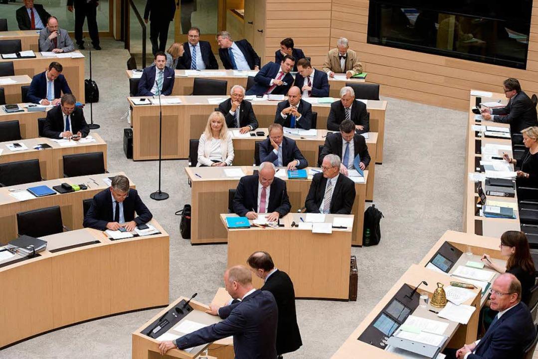 AfD-Abgeordnete im Stuttgarter Landtag     Foto: dpa