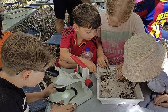 Schüler sind begeistert vom Fischmobil