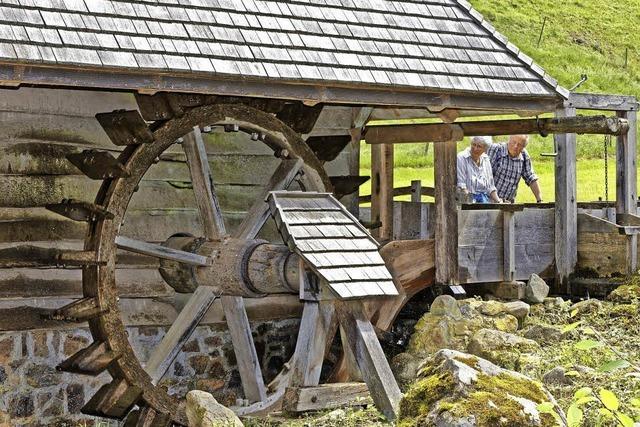 Ausflugsziel am Mühlentag
