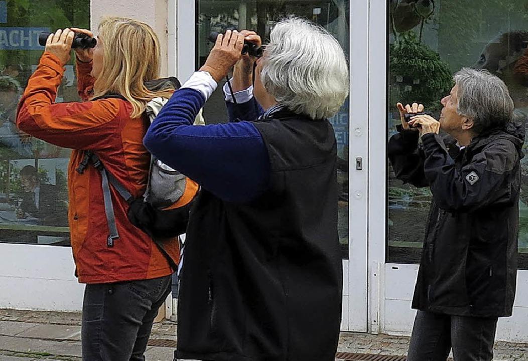 Vogelbeobachtung mit Feldstecher    Foto: Georg Voß