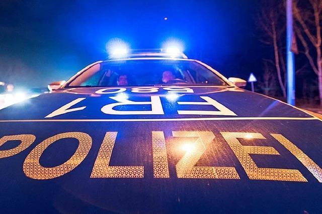 Polizei erwischt drei mutmaßliche junge Einbrecher