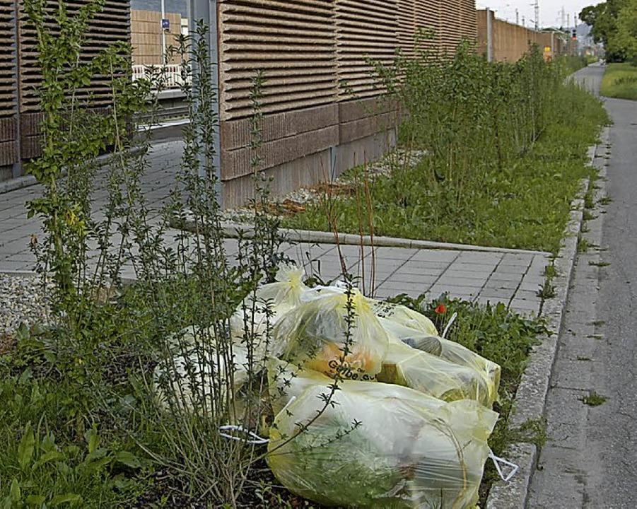 Beim Entzünden von  gelben Säcken wurde auch eine Schallschutzwand  beschädigt.   | Foto: Archivbild: Langelott