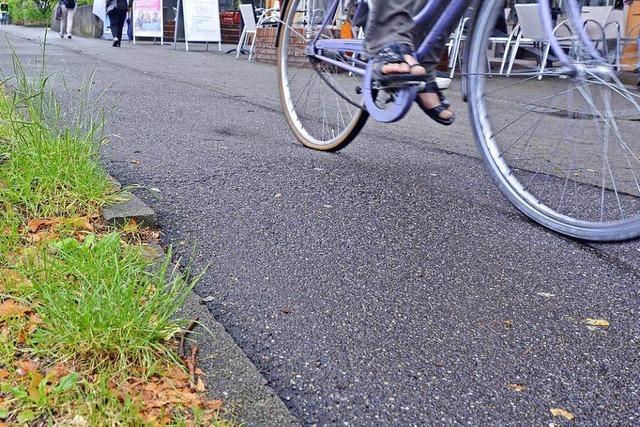 Radfahrer von Ästen auf Radweg verletzt