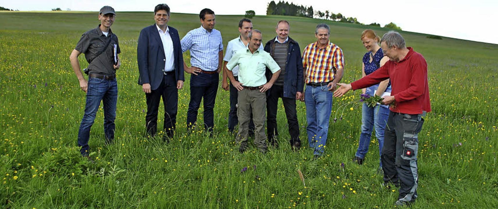 Zum Start der Initiative für heimische...achteten Wiese in Birkendorf wachsen.     Foto: Juliane Schlichter