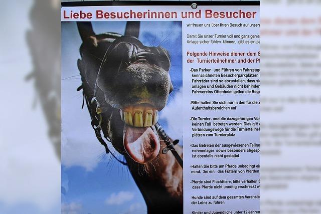 Pferdeliebe ist kein Kinderspiel