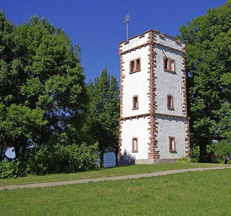 Der Aussichtsturm ist das Ziel der BUND-Tour.     Foto: Reißmann