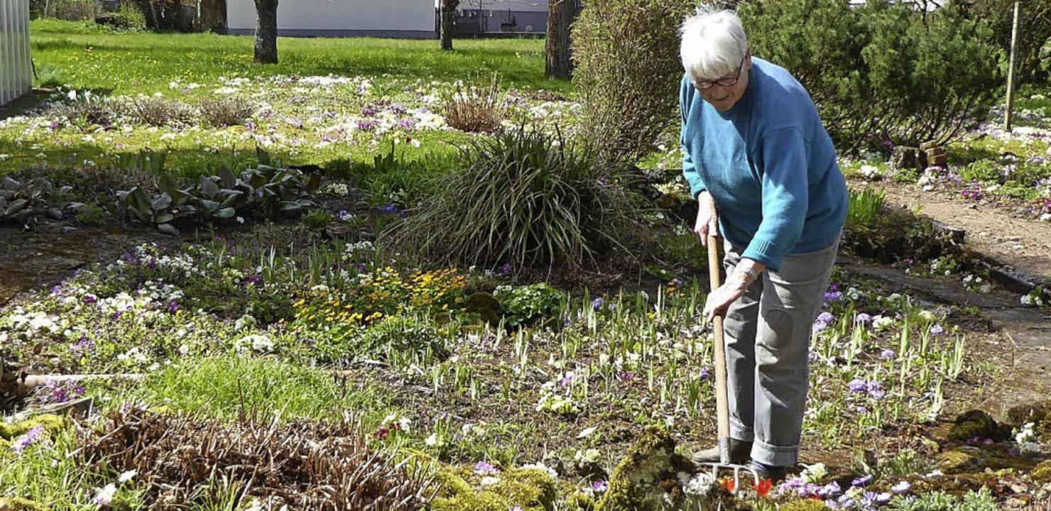 Ihr Blumenparadies  ist in 50 Jahren m...iger täglicher Gartenarbeit gewachsen.  | Foto: Heinz Scholz