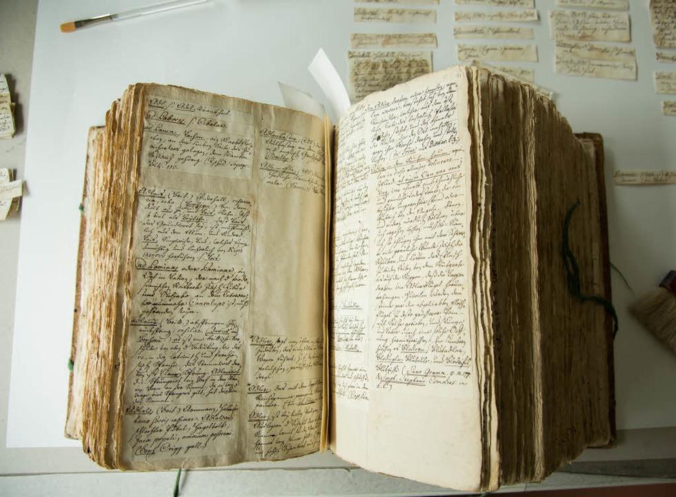 Für den Druck vorbereiteter Manuskript...erts blieben 250 Jahre lang unbekannt.  | Foto: Fotos: raz/Moritz