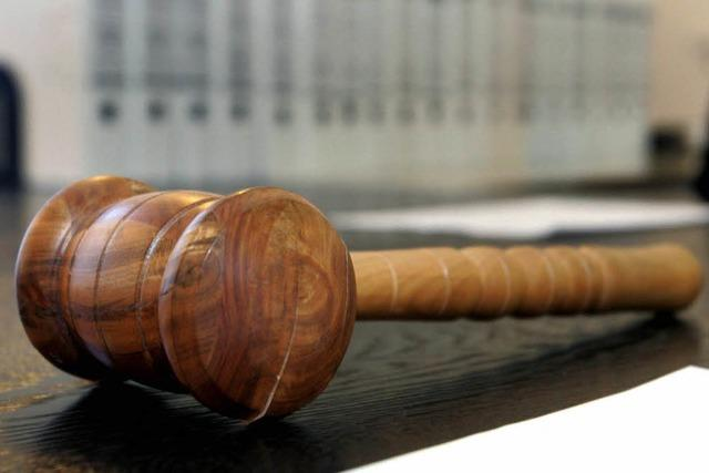Welche Erfolgschancen die AfD-Klage gegen die Bundesregierung hat