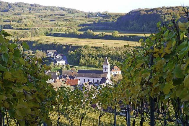 Burgundertour in Achkarren