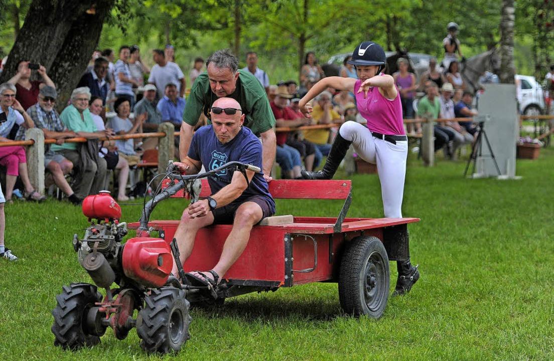 Pech für das Duo Landwirt-Reiterin: Ge...rderitt auf den Sitzkarren aufsprang.     Foto: Bettina Schaller