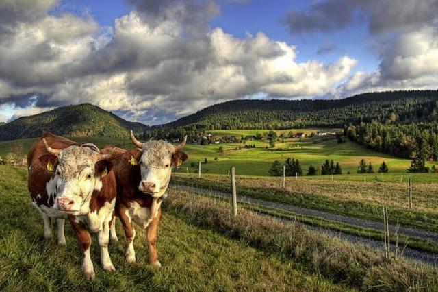 Naturschutz wird im Kreis Lörrach großgeschrieben