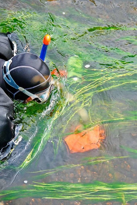 Für die Suchaktion wurde eigens der Zu...elt, um den Wasserstand zu verringern.    Foto: Helmut Seller