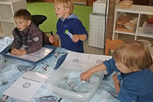 Kindergarten ist erneut Haus der kleinen Forscher