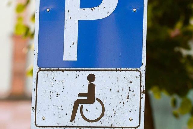 Es herrscht Einigkeit ohne Fortschritt beim Wahlrecht für Behinderte