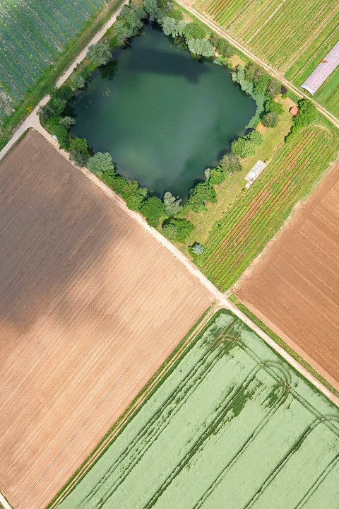 Schachbrettmuster:  Das Rheintalist  von Landwirtschaft geprägt.    Foto: Helmut Seller