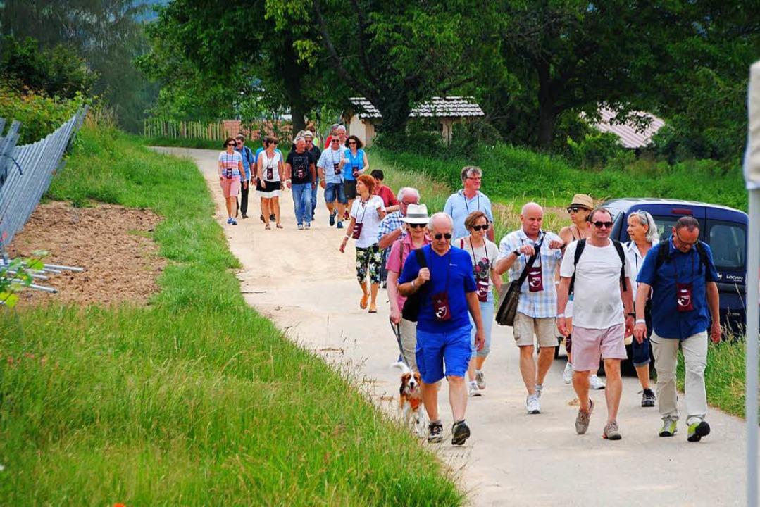 Die Weinfreunde wandern gerne von einen Stand zum nächsten.    Foto: Norbert Sedlak