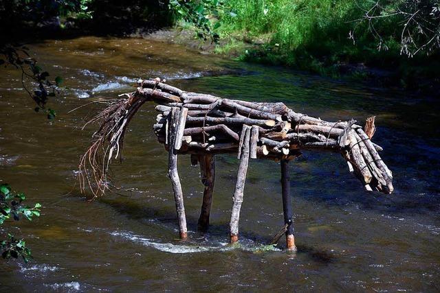 Warum steht ein Pferd aus Treibholz in der Dreisam?