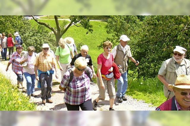 Stets gesellige Wandergruppe Friesenheim